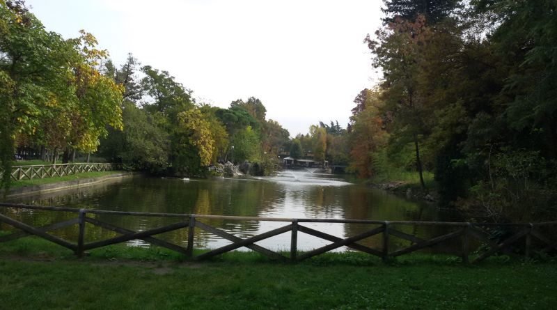 Ai Giardini Margherita di Bologna 4 alberi da abbattere