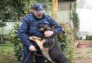 Apache trova 2 chili di fumo nel quartiere Navile di Bologna