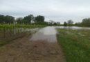 Alluvioni in Emilia-Romagna