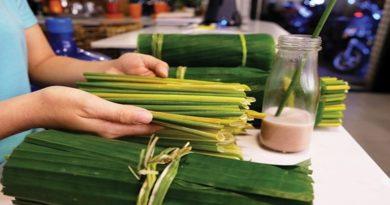 Basta plastica, dal Vietnam cannucce di erba