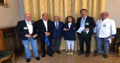 Cimice asiatica, gli agricoltori dell'Emilia-Romagna Chiediamo indennizzi per i danni