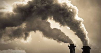 Lotta al cambiamento climatico, se lo fanno gli altri posso farlo anche io
