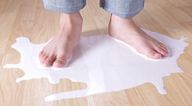 Ridurre lo spreco di latte, il premio Think4food per i ricercatori va a LacTolab