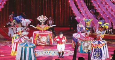 circo bologna