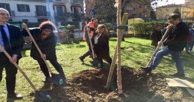 alberi scuole camst bologna