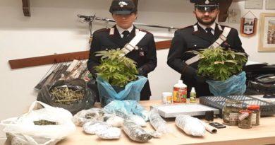 marijuana truffa online bologna