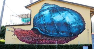 pennelli ribelli coronavirus arte cultura vergato appennino bolognese
