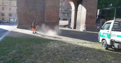 erbacce bologna marciapiedi manutenzione