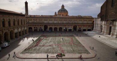 semila piantine 6000 sardine bologna piazza maggiore cultura eventi