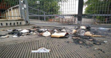 tpo bologna libri bruciati