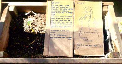 piante donne bologna femminista