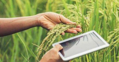 sostenibilità agroalimentare