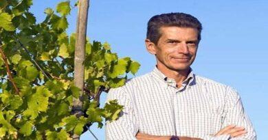 vini colli bolognesi soffrono la crisi covid e la chiusura di bar ristoranti ed enoteche bologna