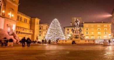 albero di natale bologna piazza nettuno