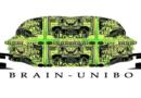 BRAIN_Unibo, il «cervello collettivo» prende parola sull'università ai tempi del Covid