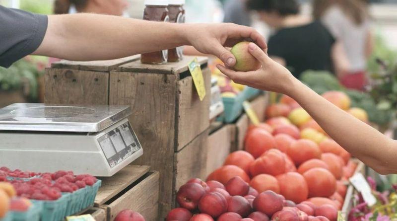 mercati all'aperto dei contadini agricoli bologna