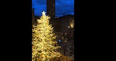 albero di natale bologna piazza nettuno natale 2020