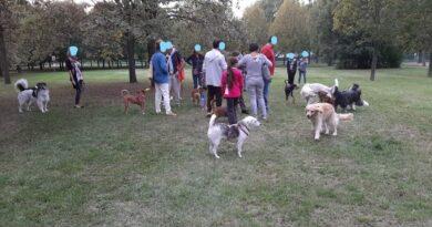 cinefilandia cani bologna area verde bilancio partecipativo bologna