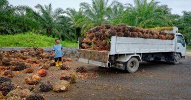 olio di palma legambeinte emilia romagna bologna