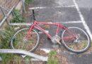 Biciclette abbandonate in strada, a Bologna tornano in vita
