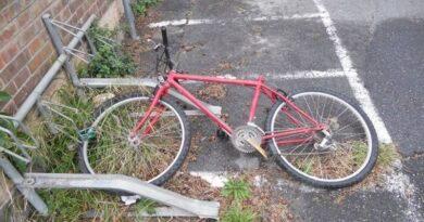 ravaldoni biciclette abbandonate per strada bologna riuso riutilizzo nuova vita