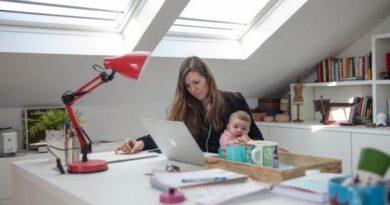 Ai bolognesi piace lavorare da casa, solo il 2,4% non è soddisfatto dello smart working