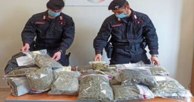 marijuana canapa light bologna