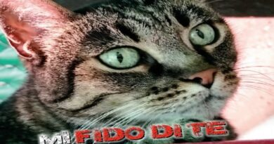 """""""Non mi abbandonare, mi fido di te"""", la campagna di Bologna contro l'abbandono degli animali"""