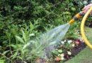 Risparmio idrico, da oggi a Bologna l'acqua potabile si può usare solo per uso domestico