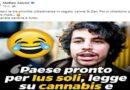 """Salvini """"sfotte"""" sui social il cannabis tour delle Sardine che gli rispondono: «Si finge leone (da tastiera)»"""