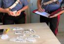 Pusher col Reddito di Cittadinanza trovato con cocaina in casa, arrestato bologna crevalcore
